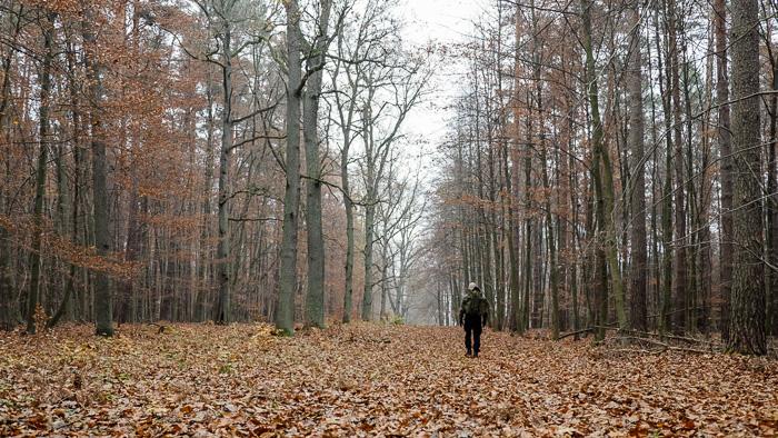 Der Wanderer und seine Spur (copyright: eisen)